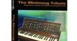 Minimoog Tribute