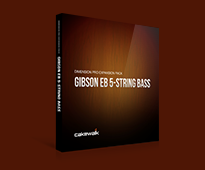 Gibson EB-5 Bass for Dimension preview image